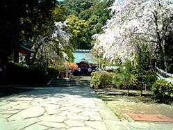 伊豆山神社祭殿