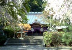 伊豆山神社新宮